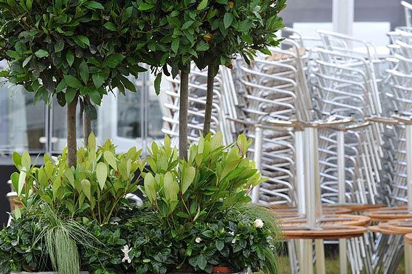 Outside furniture rental for summer events