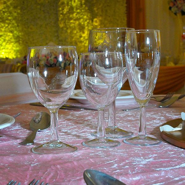 Savoie Stemware Glass Hire