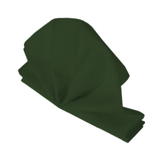 Forest Green Fabric Napkin
