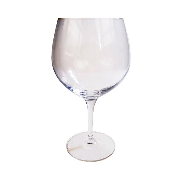 Riedel Gin & Tonic Glass